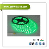 高いBright Project Quality Waterproof RGBW 4in1 LED Lighting Strip