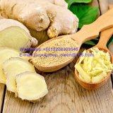 Gengibre seco de qualidade alimentícia de alta qualidade