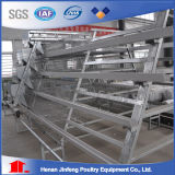Cage automatique bon marché de ferme pour des oiseaux de poulet de couche de Chine