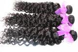 tessuto brasiliano dei capelli dei capelli umani di 8A 100% dell'arricciatura non trattata del Jerry