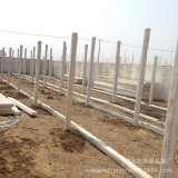 低価格の良質の鉄骨構造の商業肉焼き器の家か農場