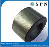 Anelli multipolari del magnete del ferrito duro di ceramica per il motore