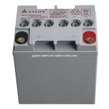 AGM Battery 12V24ah de Hight Storage para UPS Use