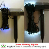 Christmas superventas Holiday Solar Panel LED Lights en Varies Colors