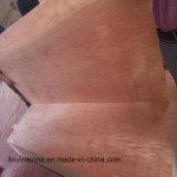 Colle imperméable à l'eau de faisceau de peuplier de pente du contre-plaqué BB/CC de face de Bintangor