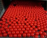 In het groot Ballen Paintball Kogels/Paintball met de Norm van ISO