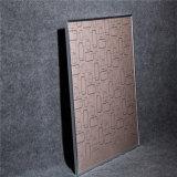 Chaufferette fixée au mur en cristal de radiateur électrique de carbone d'illustration de Home Office d'offre spéciale