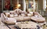 Sofà di lusso, sofà reale, sofà del tessuto, sofà del palazzo (A899)