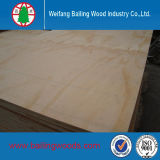 Alta calidad Commercial Plywood con Low Price