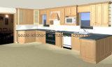 De Moderne Keukenkast Paiting van Australië