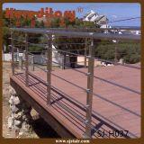 Projeto dos trilhos do aço inoxidável dos corrimão dos trilhos da escada de Inox (SJ-S108)