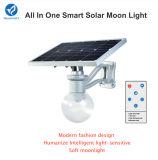 Lumière solaire directe de jardin d'usine de Bluesmart 6W-12W 1500-1800lm Bridgelux