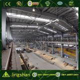 Almacén prefabricado de la estructura de acero del palmo grande (LS-SS-553)