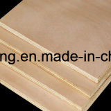 Chapas de madera para embalaje de Commerical