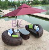 Sofa extérieur de bâti d'étage de rotin de PE de combinaison de plage de syndicat de prix ferme de loisirs de Brown