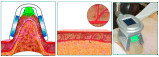 Strumentazione di dimagramento sicura di congelamento grassa di Cryolipolysis delle 4 maniglie velocemente