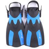 수영과 중국제 Snorkeling-를 위한 짧은 급강하 탄미익