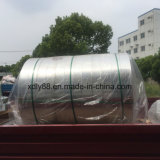 Striscia di alluminio per il dissipatore di calore