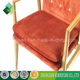 優雅な様式のホテルのアパート(ZSC-47)のための木の肘掛け椅子の残りの椅子