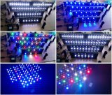 산호초를 위한 가득 차있는 스펙트럼 수족관 LED 점화