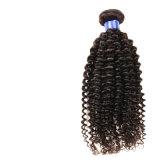브라질 꼬부라진 Virgin 머리 4개 뭉치 브라질 깊은 파 8A 처리되지 않은 부드러움 100 사람의 모발 Virgin 브라질 머리 직물 뭉치