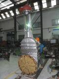 API Stainless Steel CF8 (M) / CF3 (M) Válvula de porta com flange