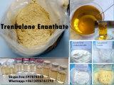 Hoogste Puirty 99.8% Trenbolone Enanthate/Hormoon van de Steroïden van Tren E (het parabolan)
