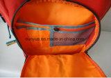 Fornitore della Cina sacchetto di nylon durevole dello zaino del taccuino da 18.5 pollici, zaino del computer portatile di stile di corsa multifunzionale dell'OEM giovane per un computer portatile da 15.6-17 pollici