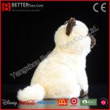 Het Levensechte Zachte Siamese Stuk speelgoed van de Kat van de Pluche van de Kat ASTM Realistische Gevulde Dierlijke