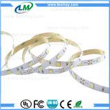 Tira flexible de interior de la luz LED de la decoración 5050