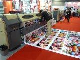 Serviço de impressão da bandeira/serviço de impressão bandeira do cabo flexível