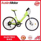 350W bici elettrica della montagna E con la batteria nascosta E Fatbike