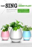 Piano inteligente da planta do toque do altofalante esperto creativo do Flowerpot da música de Bluetooth