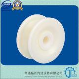 Rechte Lopende Plastic Kettingen (820) voor Bottelende Industrie