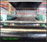 Лист волокна Gw2009 резиновый с ISO9001