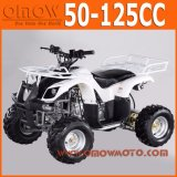 50cc - 110cc Quad Kids 4 Wheeler