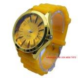 Het Plastic Horloge Fs436 van de Beweging van het Kwarts van Japan van de manier