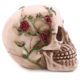 Scheletro medico anatomico di 1:1 del cranio della replica del modello umano a grandezza naturale della resina