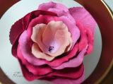 마스크 색깔 장미 꽃잎 Blusher 뺨 개인적인 로고