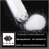 CAS: 1255-49-8 Steroid-Puder-rohes Testosteron Phenylpropionate