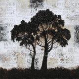 انطباعيّة ألومنيوم حقيرة أكريليكيّ نسخة [أيل بينتينغ] لأنّ أشجار