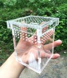온라인 구매 도매 중국에서 아크릴 파충류 감금소