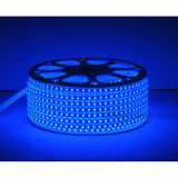 Alta tensão SMD LED Strip Light-Su-Hvsmd5050-72PCS- 6W / Meter