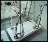 Fabrication européenne de balustrade de qualité (HR1348)