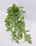 정원의 훈장을%s 거는 시멘트 남비에 있는 /IVY 스페인 잎 또는 문 또는 Windows
