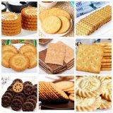 Machine de formage et de cuisson au biscuit doux Ligne automatique de processus complet
