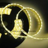 Luz de tira ligera multicolora de interior de RGBW SMD5050 los 60LEDs/M LED