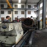 熱い販売のロシアの赤いカリウムの造粒機機械