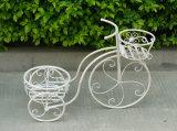 Держатель плантатора велосипеда 2 ярусов шикарный