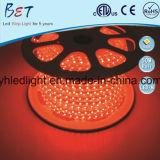 ETL 5050 RGB LED 지구 빛 코드 60LED 크리스마스 훈장